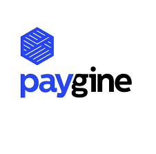 ICO Review: Paygine
